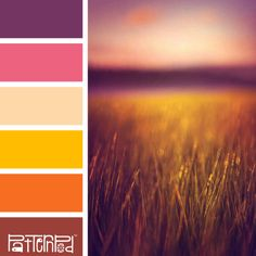 Sunset Steppe #patternpod #patternpodcolor #color #colorpalettes