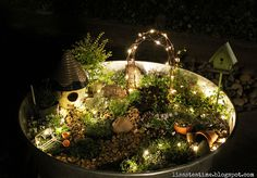 Soooo pretty. Lights added to a fairy garden. This could be set up indoors or outside for a nice night light inside and something pretty to look at outside at night near the patio.