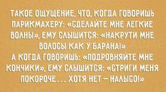 Облысение http://www.doctorate.ru/alopecia-cure/