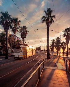 Melbourne tram along St Kilda esplanade