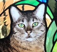 chat vitrail