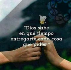 Autoayuda y Superacion Personal Quotes About God, Love Quotes, Inspirational Quotes, Motivational Quotes, Bible Quotes, Bible Verses, Simpsons Frases, God Loves Me, Dear Lord