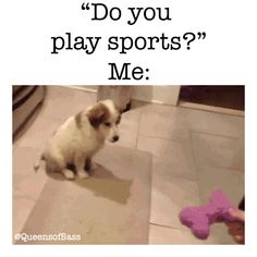 Discover & Share this Animated GIF with everyone you know. GIPHY is how you search, share, discover, and create GIFs. #puppy