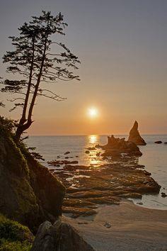 Sunset at Shi Shi Beach, Olympic National Park, Washington Evergreen State, Oregon Travel, Beautiful Sunrise, Oregon Coast, Pacific Northwest, Places To See, Fine Art America, National Parks, Scenery