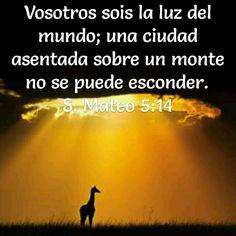 Mateo 5:14