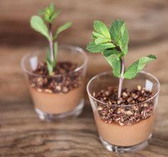 Recette de petits pots de mousse au chocolat façon petite plante