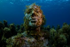 "In in the waters surrounding Cancun, Isla Mujeres and Punta Nizuk appeared majestic underwater museum ""MUSE"". Cozumel, Cancun Mexico, Underwater Sculpture, Underwater City, Beautiful World, Beautiful Places, Underwater Photography, Mexico Travel, Under The Sea"