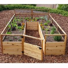 8 ft x 12 ft Western Red Cedar Raised Garden. Perfect for your own veggie garden!