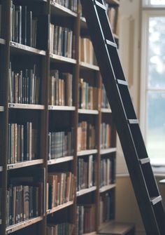I want a bookcase so big and filled, it requires a ladder. Also, filled with only used books. That's the dream!