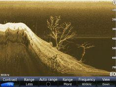 down imaging sonar Bass Fishing Tips, Fishing Rigs, Walleye Fishing, Fishing Guide, Salmon Fishing, Carp Fishing, Fishing Stuff, Ice Fishing, Fishing Tackle