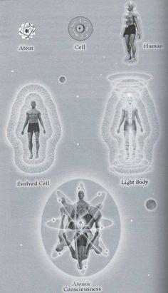 Vintage Illustration Vintage illustration of the Development of Consciousness. Vintage IllustrationSource : Vintage illustration of the Development of Consciousness.
