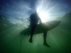 Photo by Chris Harsh Huntington Beach, Whale, Animals, Whales, Animales, Animaux, Animal, Animais