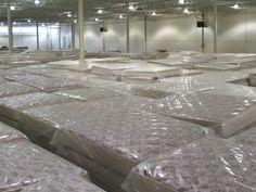 cheap queen mattress sets - Cheap Queen Mattress Sets