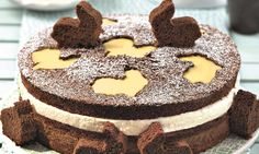 Schoko-Torte mit Eierlikörsahne Rezept | Dr. Oetker