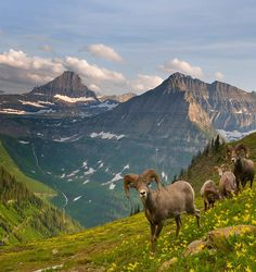 Glacier National Park ,USA: