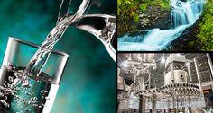 Expo Veneto: Water - Planet - Events