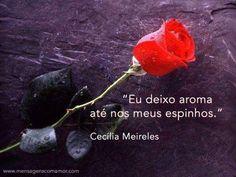 ―Cecília Meireles
