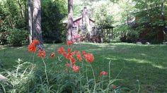 Cabin vacation rental in Harrisonburg from VRBO.com! #vacation #rental #travel #vrbo