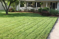 Hometalk | 6 Tips To A Great Lawn – Without Using Chemicals