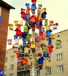 Lauren wants to make a colored bottle tree for our front yard.  I never thought of a bird house tree, but I am now...