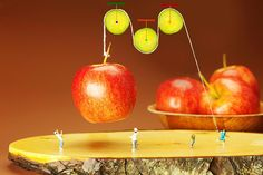 Pulley Photograph - Cucumber Pulley Moving Apples Food Physics by Paul Ge