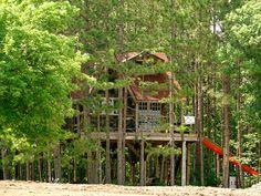 Treehouse Bliss