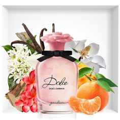 bf6736ced27df 40 Best dolce and gabbana perfume images