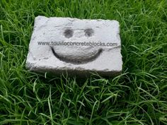 Image result for Smiley concrete block
