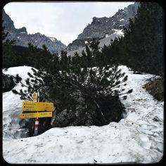 Ski season is over but still a bit of snow left. #soultravels #outdoorgirl #adventuregirl #mindful #munichandthemountains