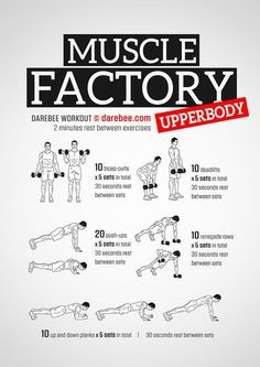 Muscle Factory Upperbody Workout Strength workout Two A Day Workouts, Workout Routine For Men, Workout Plan For Beginners, 30 Day Workout Challenge, Gym Workouts, Muscle Fitness, Dumbbell Workout, Aerobic Exercises, Exercises