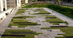 Paving: BGU University Entrance Square by Chyutin Architects