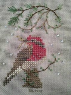 housefinch photo by txstchr Xmas Cross Stitch, Beaded Cross Stitch, Cross Stitch Borders, Cross Stitch Animals, Counted Cross Stitch Patterns, Cross Stitch Designs, Cross Stitching, Cross Stitch Embroidery, Embroidery Patterns