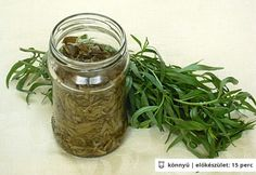Tárkony télire Preserves, Green Beans, Mason Jars, Paleo, Spices, Herbs, Canning, Fruit, Vegetables