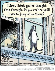 Of course he thought of that. Cats think of everything. Don't they?