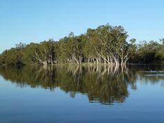 Katarapko Creek II South Australia