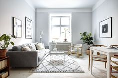 gray sofa + walls +