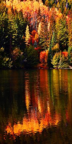Reflections at Cottonwood Lake near Buena Vista, Colorado • photo: Terril Heilman on FineArtAmerica