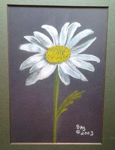 Daisy  original colored pencil art print by wordfirstartstudio, $10.00