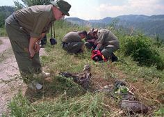 A Finnish forensic expert looks at the remains of one of more than 100 Muslims killed on a hill, deep in Bosnian Serb Territory on <span>July 2, 1996</span>. The victims were removed to a hospital in the Bosnian government city of Tuzla for identification and later reburial.