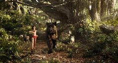 Screencap Gallery for The Jungle Book (2016) (1080p Bluray, Disney Live-Action). The man-cub Mowgli flees the jungle after a threat from the tiger Shere Khan. Guided by Bagheera the panther and the bear Baloo, Mowgli embarks on a journe