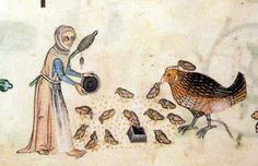 A peasant woman feeding her hen and chicks. Luttrell Psalter, England around 1330-1340, London, British Library, Add. Ms. 42130, fol. 166V.