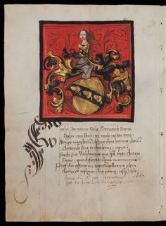 Rektoratsmatrikel der Universität Basel, Band 1 AN II 3 Basel/Schweiz nach 1460 Folio 77v