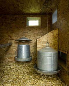 Chook chooks house renovations