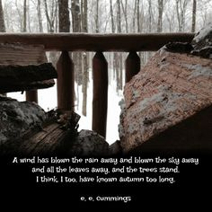"""""""A wind has blown the rain away and blown the sky away and all the leaves away, and the trees stand. I think, I too, have known autumn too long."""" ―e.e. cummings  Photo: Firewood on the porch of a log cabin during a snow storm, Brown County, Indiana. 2015."""