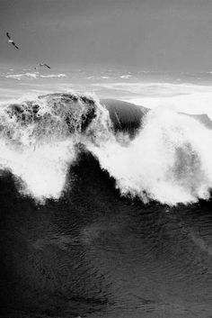 #ocean black and white #photography #nature