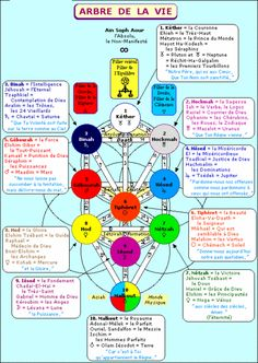 Comment construire l arbre de vie arbre de vie for Astrologie ou le miroir de la vie