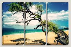 """Valley of Calm Trees"" Blue Sky, Turquise Ocean, Yellow Sand Beach, Big Beach, Maui Hawaii Canvas Art by Joelle Joy"