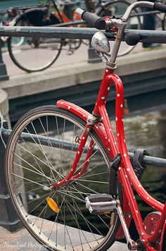 Polka Dots, Amsterdam Bike Photography - Red and White Bicycle, Dutch - Travel in the Netherlands, Girls Room, Lady Bug, Minnie Style