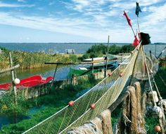 Fischereitradition auf Fischland-Darß-Zingst, der Hafen in Born Foto: Agentur Waterkant #meckpomm #darss #fischerei #fisch #hafen