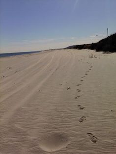 My beautiful Sandy Hook, NJ